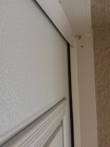 gaps-on-high-lift with-windows
